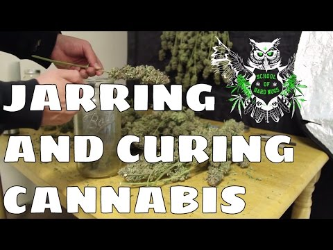 Jarring and Curing Cannabis | Jarring and Curing Marijuana | How to Cure Weed | How to Jar Weed