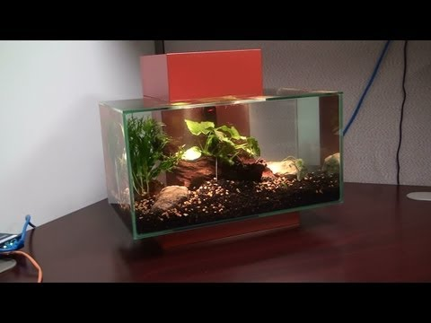 Fluval Edge 6 Gallon Unboxing And