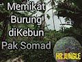 Memikat Burung Dikebun Pak Somad  Mp3 - Mp4 Download