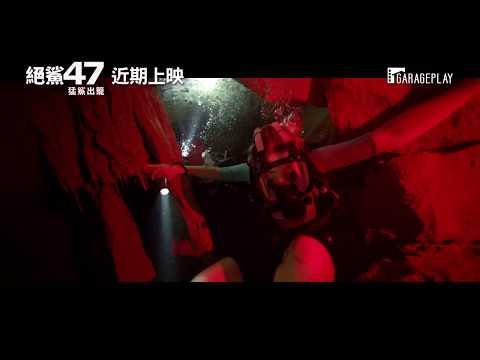 今年最「鯊」之作【絕鯊47:猛鯊出籠】47 Meters Down: Uncaged 電影預告 ~近期上映