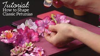 Heartfelt Creations - Classic Petunia Collection Tutorial
