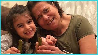 Rüya Anneannesi ile Birlikte Yaprak Dolma Sarma Sarıyor l Eğlenceli Çocuk Videosu