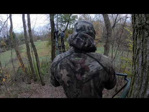 Bow Hunt And Kill - 2019 - Big Michigan Buck