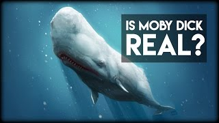 Is Moby Dick Real?