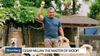 Meet the Dog Whisperer Cesar Millan: The Master of Woof!