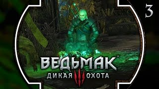 Прохождение Ведьмак 3: Дикая охота - #3 Лихо у колодца