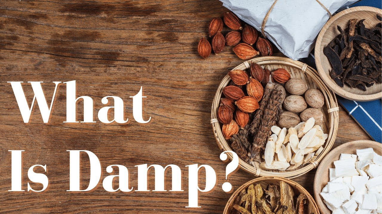 What is Damp?
