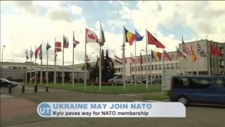 Ukrainian Prime Minister Arseniy Yatsenyuk: Ukraine may join NATO