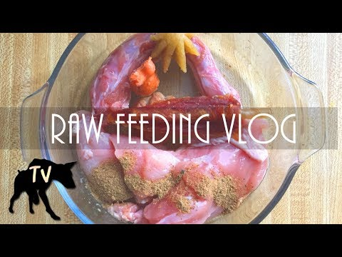 Close up raw feeding dogs | Raw Feeding Vlog