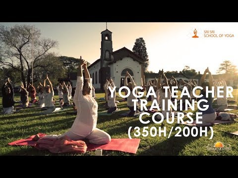 Top Yoga Teacher Training Institutes/Courses in India | Kaamoksha