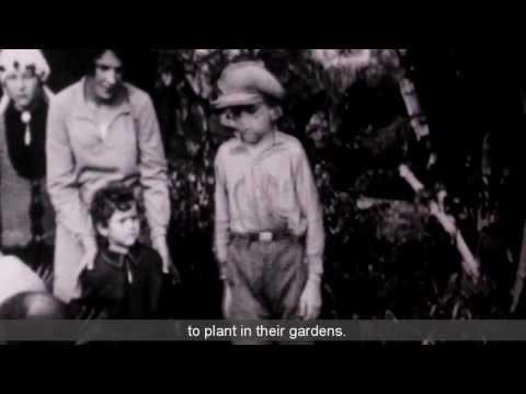 Cinema KKL- Bringing History Back to Life