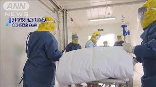 新型コロナ 死者は世界で565人 感染者2万8000人超(20/02/06)
