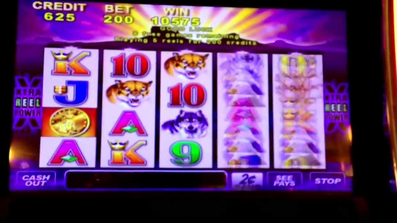 Aqueduct casino penny slots soaring eagle casino bus