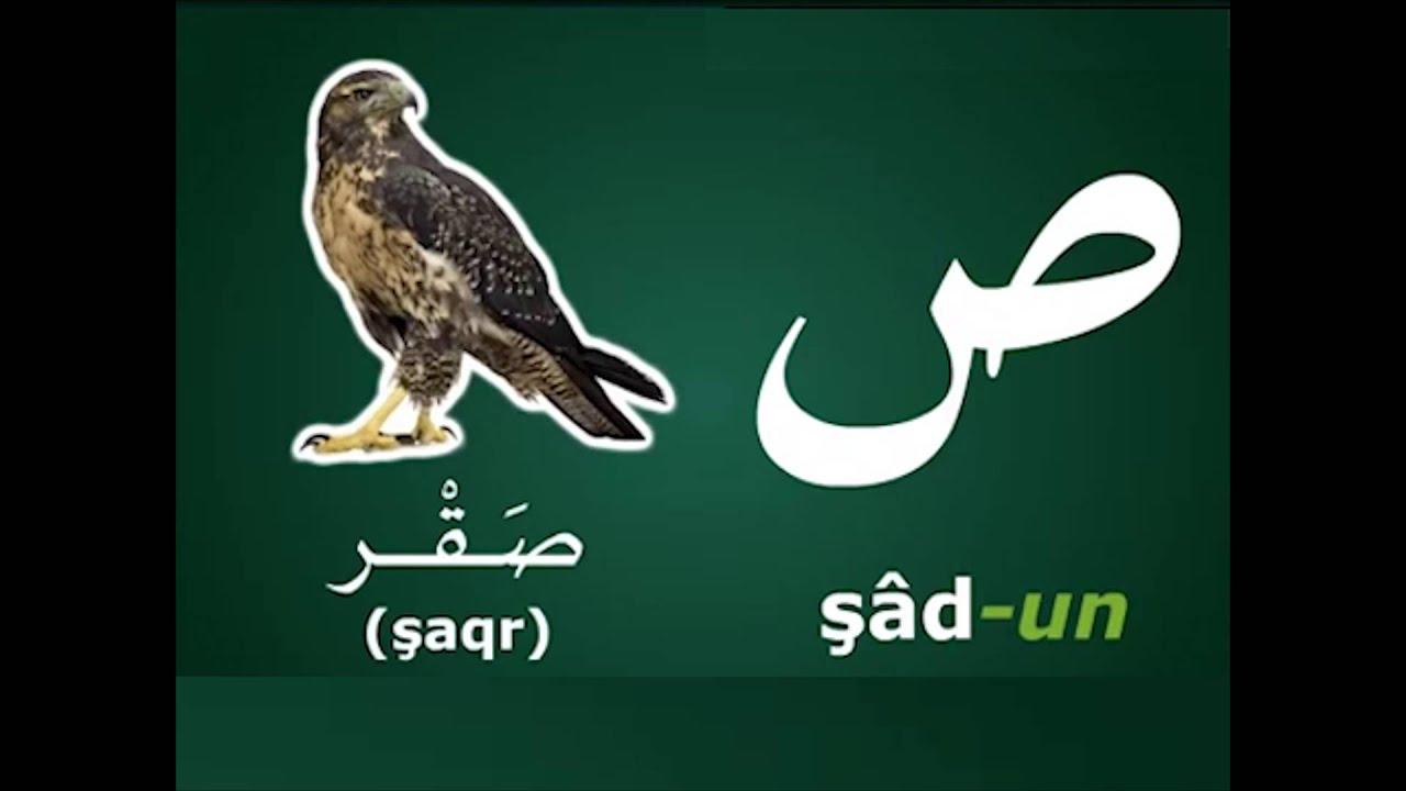 Arabic Alphabet Coloring Pages Pdf