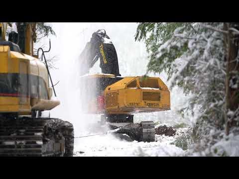 MVR Timber Cutting 2017
