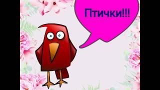 Самые красивые птички!