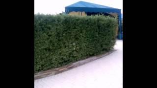 Аквапарк в Донецке Ростовская-область!!!!!(, 2016-07-31T18:59:14.000Z)