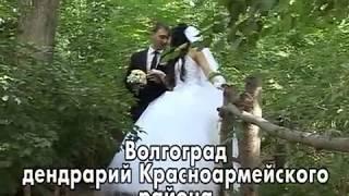 Волгоград Красноармейский дендрарий 2013