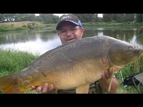 Sting # 56 Duży karp na feeder. Łowisko Przelewice