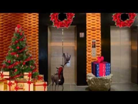 ZiQoo-Dubai Staff Christmas Video Presentation...