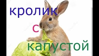 Кролик/С Тушеной Капустой/В Казане