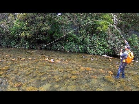 Amazing Dry Fly Fishing, Best Cicada Bite Ever [New Zealand]