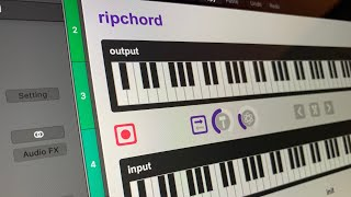 Ripchord Overview and DAW Setups