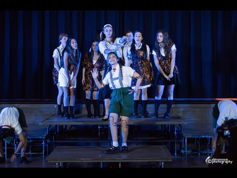 The Sound of Music Tribute  The Lonely Goatherd