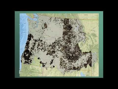 Mapping and Modeling Annual Probability of Year Round Streamflow:  A Case Study