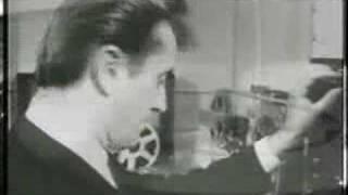 John Leyton - Johnny Remember Me