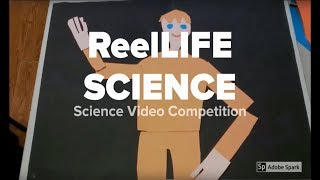 What is ReelLIFE SCIENCE