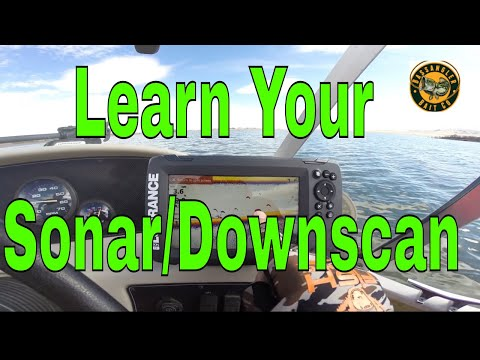 How To Read 2D Sonar & Downscan To Help Catch More Fish | Lowrance Hook2