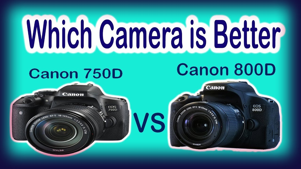 Canon 750D vs Canon 800D Simple and Best Reivew