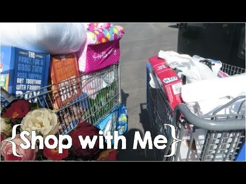 Shopping Cart Overload ║ Large Family Shop with Me Vlog │July 2017