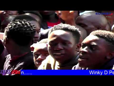 Winky D live in Harare Gardens -Kwese iflix 2018