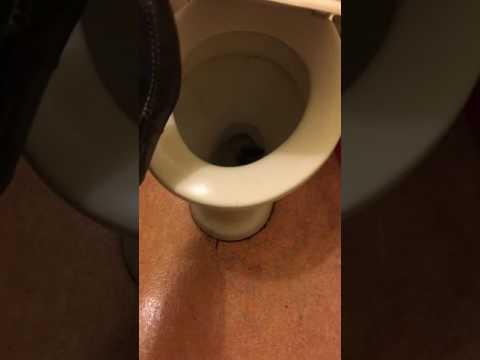 Секс с толстой в туалете видео слабый!!!