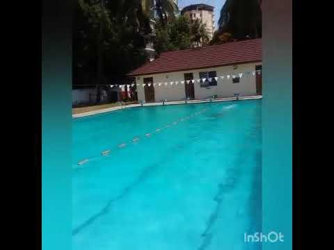 Champion rise swimmer