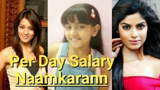 Per Day Salary Of Naamkaran Actor