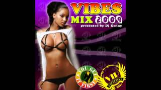 DJ Kenny - Vibes Mix 2009 (Dancehall 2009 Mix CD Preview)