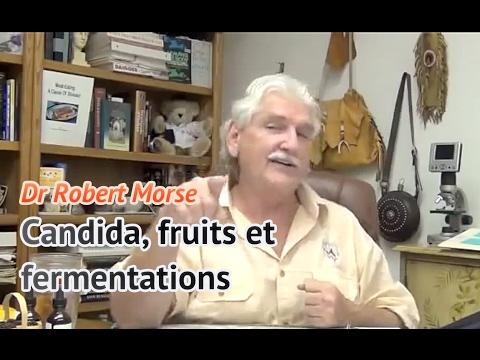 Dr Robert Morse en français : Candida, fruits et fermentations