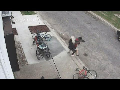 Thief tries to steal phone  from Mid-City martial arts instructor - Bad idea