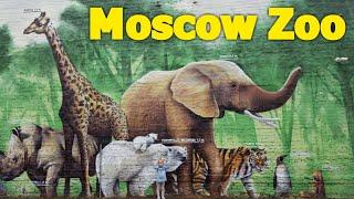 Мы в Москве Московский Зоопарк Много животных Детям Ищем павлина Для детей Москва часть 2 | Златуня