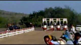 carreras de caballos en soto la marina