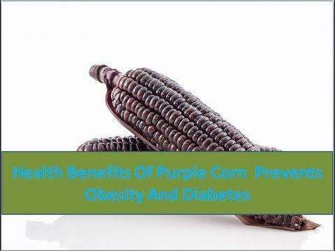 Health Benefits Of Purple Corn  Prevents Obesity And Diabetes - Health Care