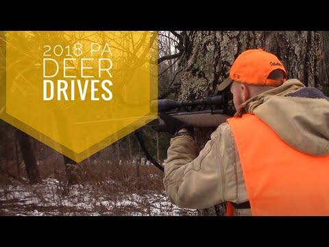 INCREDIBLE Day Of Deer DRIVING! (Double HEART Shots!)-PA Gun Hunting 2018!