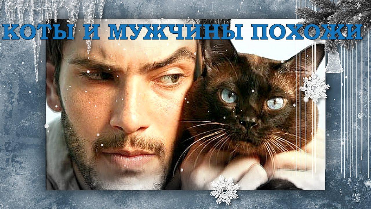 Открытки мужчина и кот
