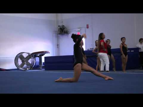 Nina Khamnei 2nd Floor W.Sectional Championships 2015 Wildfire Gymnast Level 3