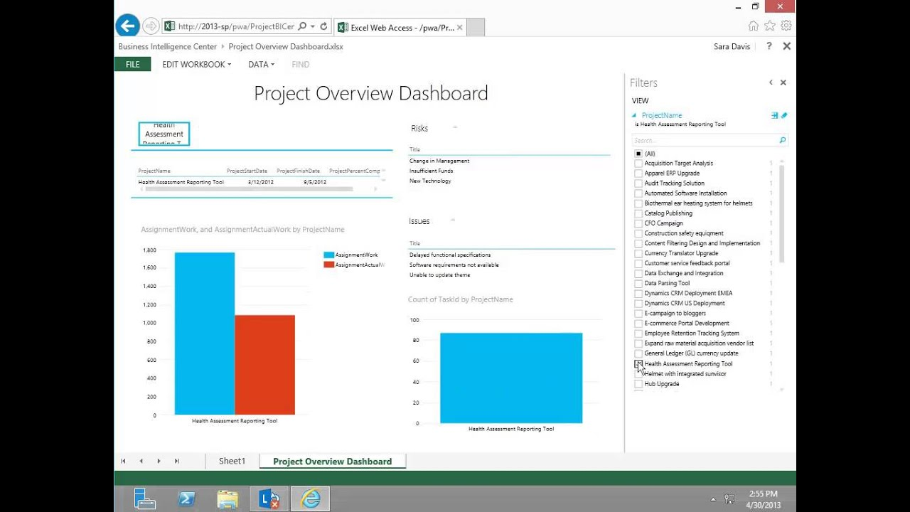 how to add project title in microsoft project 2013