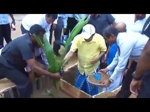Coconut Cultivation in Killinochchi under the Food Production National Program 2015