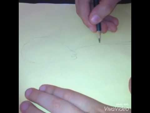 تعليم رسم العنكبوت للمبتدئين Youtube